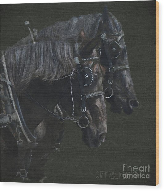 Two Percherons Wood Print