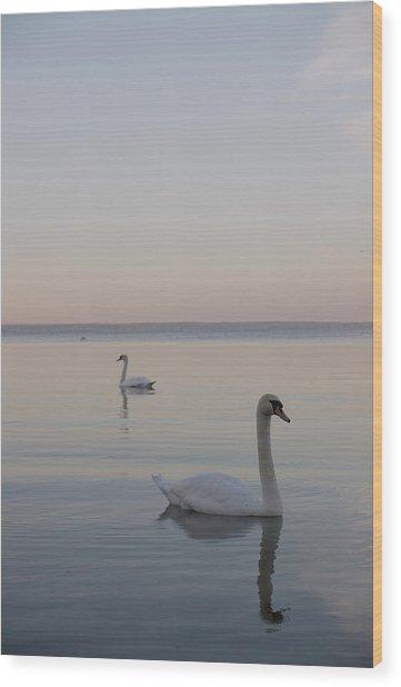 Two Swans Wood Print by Stanislovas Kairys