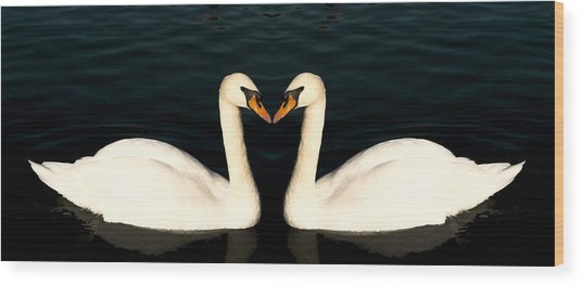 Two Symmetrical White Love Swans Wood Print