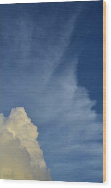Two Tone Clouds 9384 Wood Print