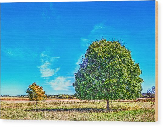 Two Trees On The Illinois Prairie Wood Print