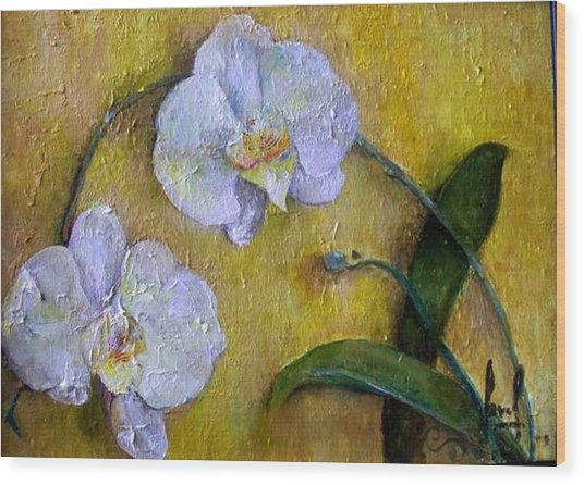 Two White Orchids Wood Print by Carol P Kingsley