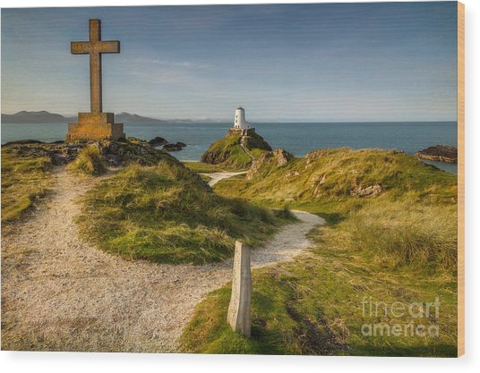Twr Mawr Lighthouse Wood Print