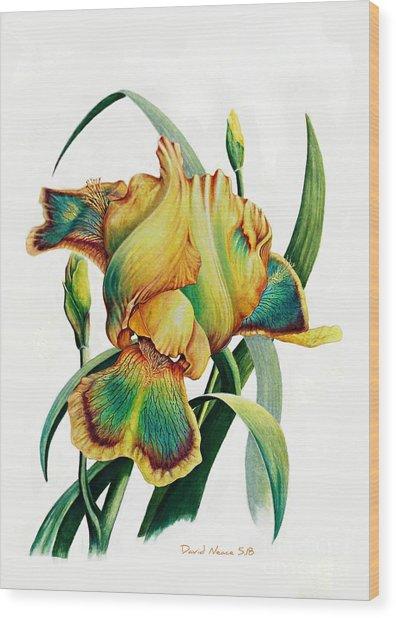 Tye Dyed Wood Print