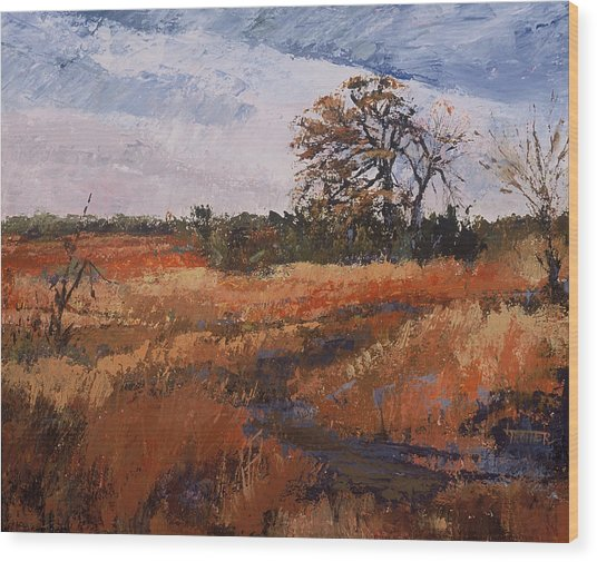 Typical Texas Field Wood Print by Jimmie Trotter