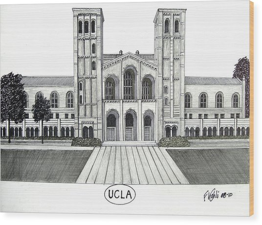 U C L A Wood Print