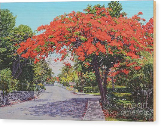 Ubs Poinciana Wood Print