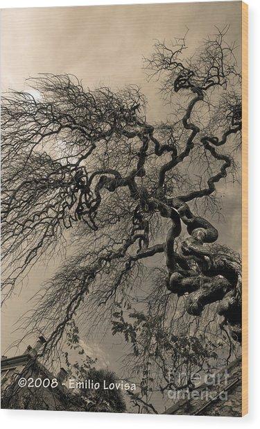 Udine Castle Wood Print by Emilio Lovisa