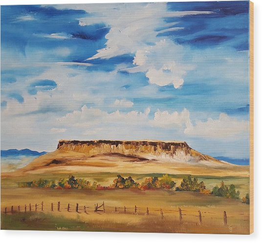Ulm Montana First People's Buffalo Jump   93 Wood Print