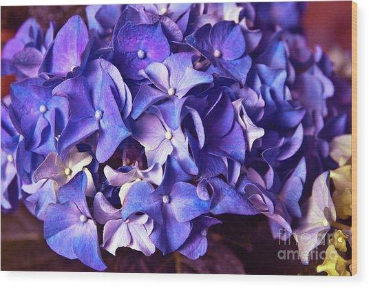 Ultra Violet Dance Wood Print