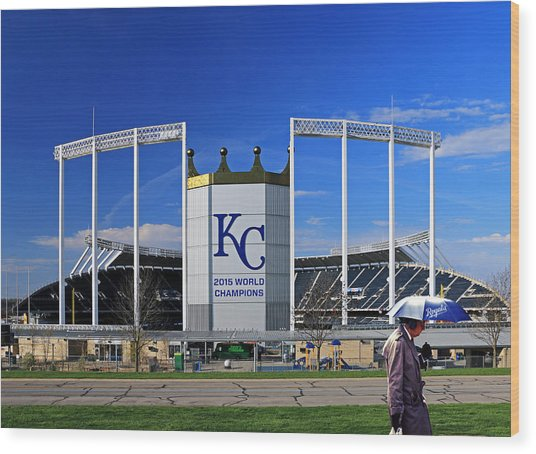 Umbrella Man At Kauffman Stadium Wood Print