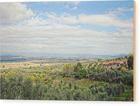 Umbrian View Wood Print