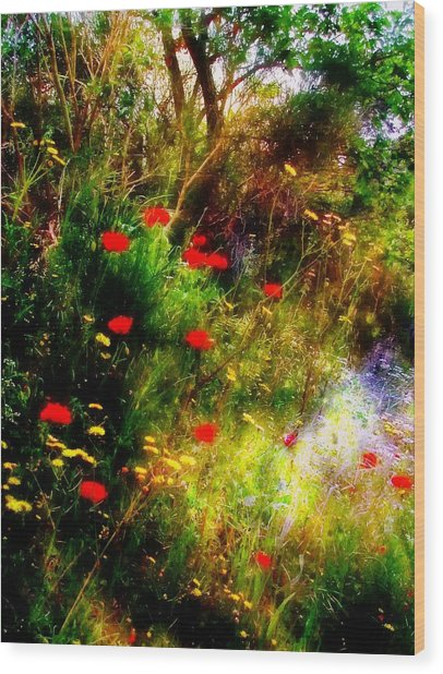 Umbrian Wild Flowers 3 Wood Print