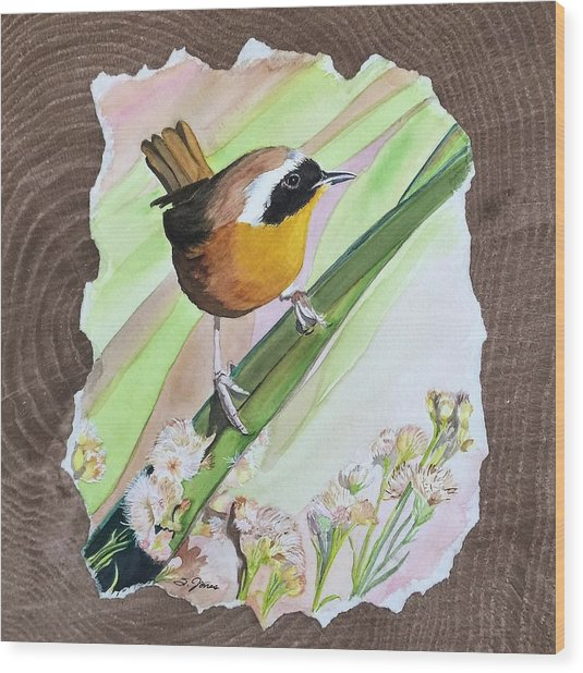 Uncommon Yellowthroat Wood Print