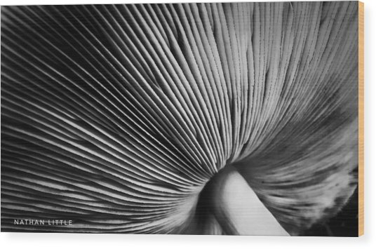 Under A Mushroom Wood Print