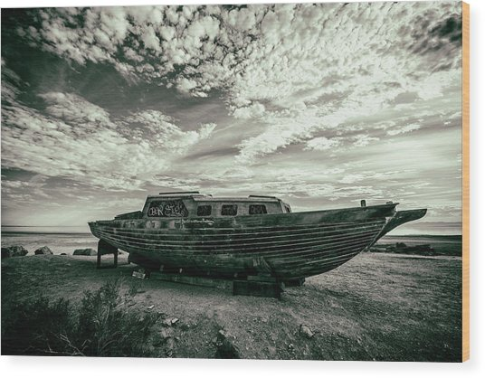 Under The Salton Sky Wood Print