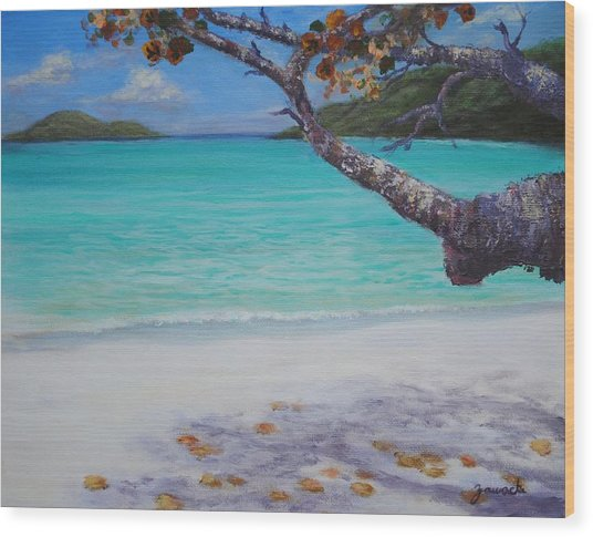 Under The Tree At Magen's Bay Wood Print