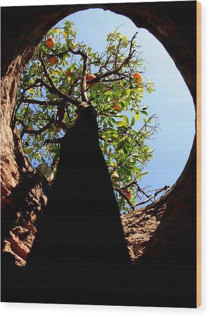 Underground Tree Wood Print