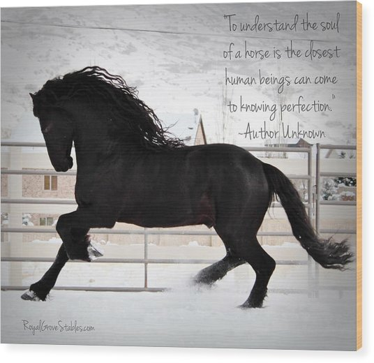 Understand The Soul Of A Horse Wood Print