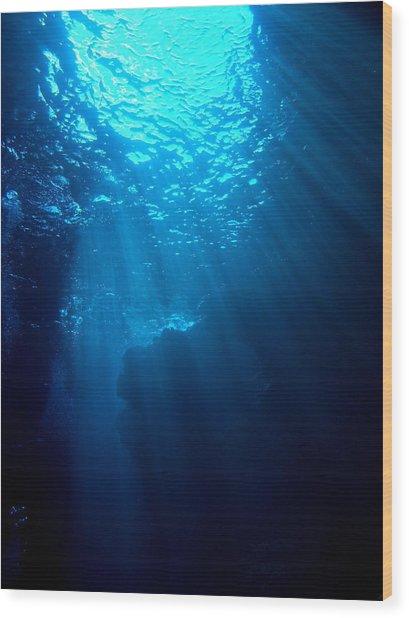 Underwater Sunlight Wood Print by Takau99