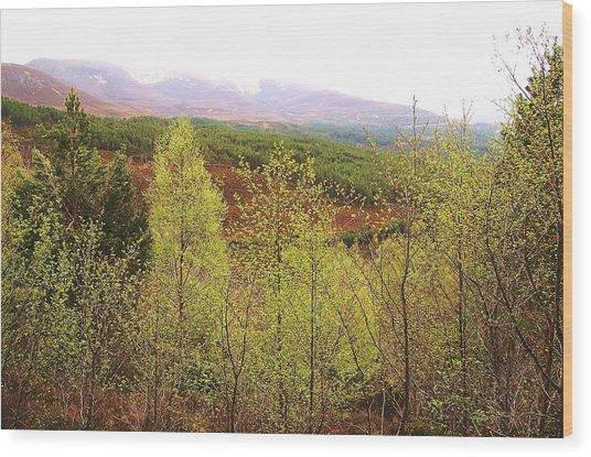 Uneven Wood Print