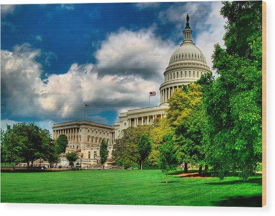 United States Capital House Side Wood Print