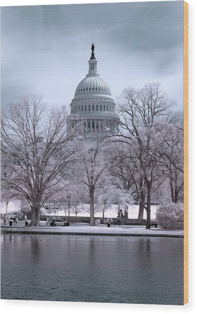 Wood Print featuring the photograph United States Capitol by Ryan Shapiro