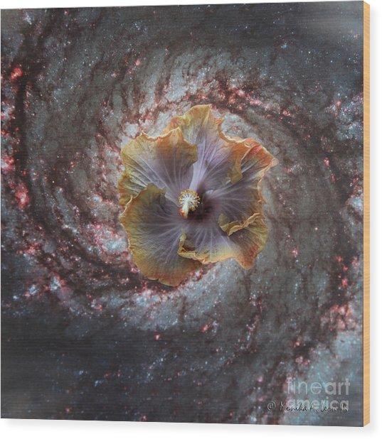 Universe Of Flowers II Wood Print