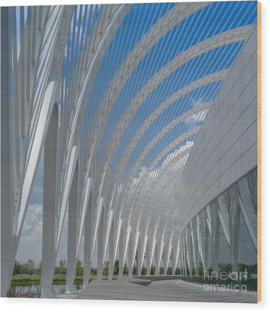 University Arching Lines Wood Print