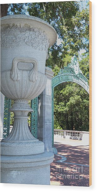 University Of California At Berkeley Sproul Plaza And Sather Gate Dsc6288 Wood Print