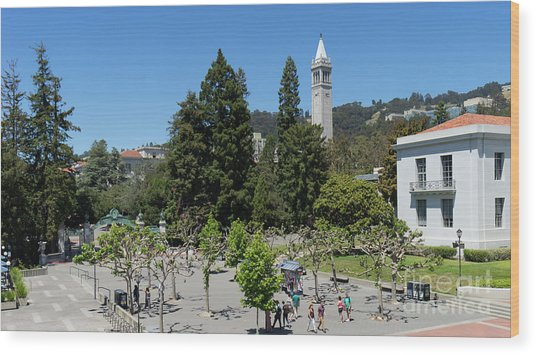 University Of California At Berkeley Sproul Plaza Sather Gate And Sather Tower Campanile Dsc6254 Wood Print