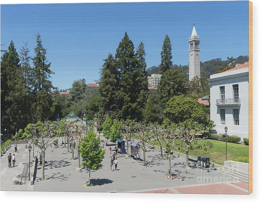 University Of California At Berkeley Sproul Plaza Sather Gate And Sather Tower Campanile Dsc6256 Wood Print