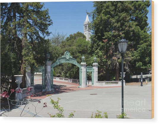 University Of California At Berkeley Sproul Plaza Sather Gate And Sather Tower Campanile Dsc6261 Wood Print