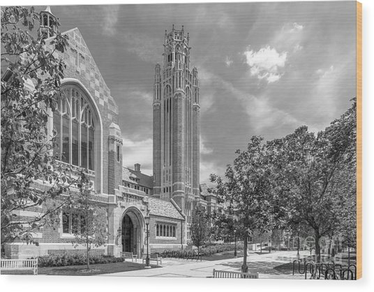 University Of Chicago Saieh Hall For Economics Wood Print