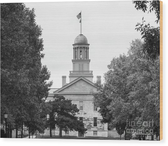 University Of Iowa Old Capital Wood Print