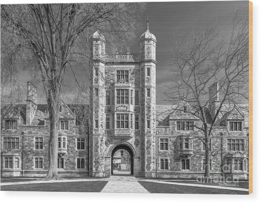 University Of Michigan Law Quad Wood Print