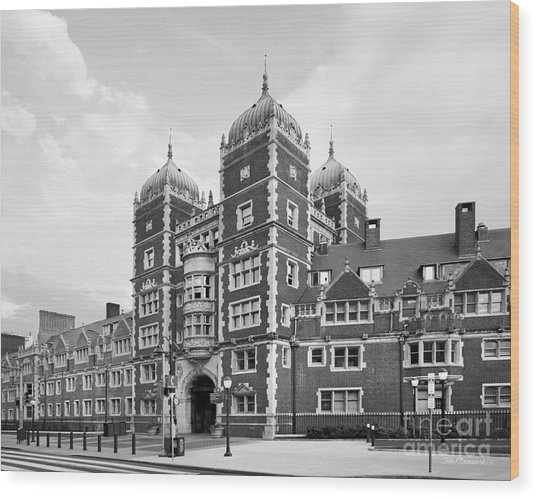 University Of Pennsylvania The Quadrangle Wood Print