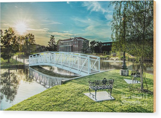 University Of Southern Mississippi Wood Print