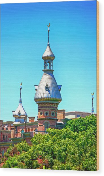 University Of Tampa Minaret Fl Wood Print