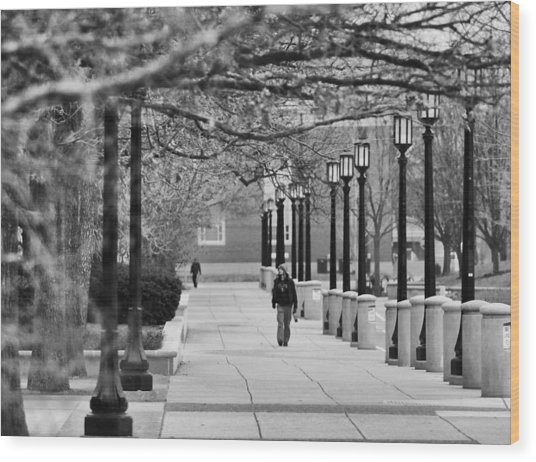 University Walk Wood Print