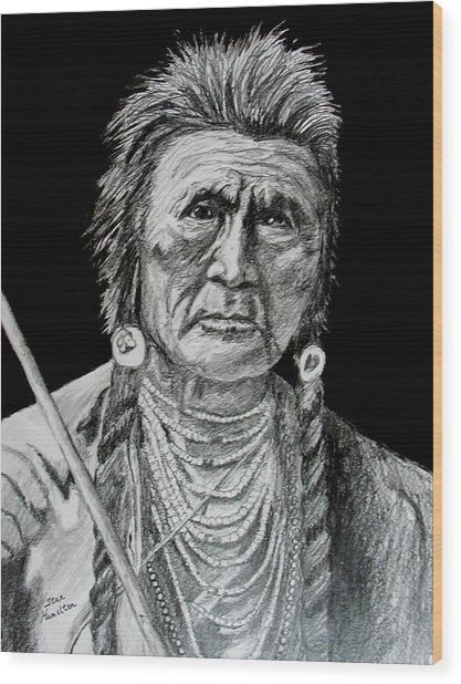 Unknown Indian V Wood Print by Stan Hamilton
