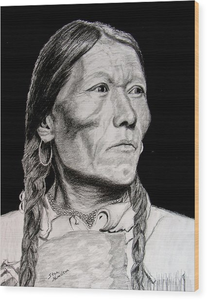 Unknown Indian Vii Wood Print by Stan Hamilton