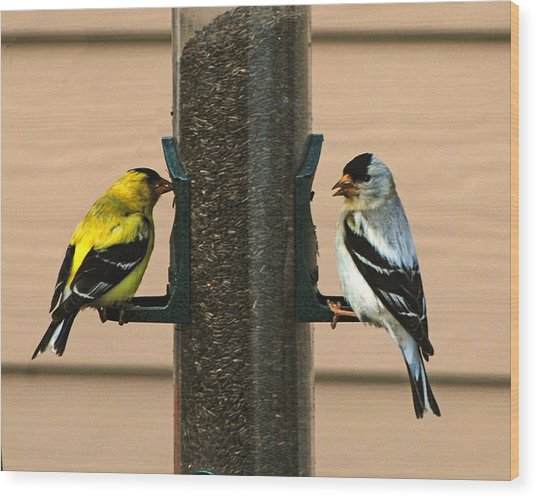 Unmatched Pair Wood Print by Wilbur Young
