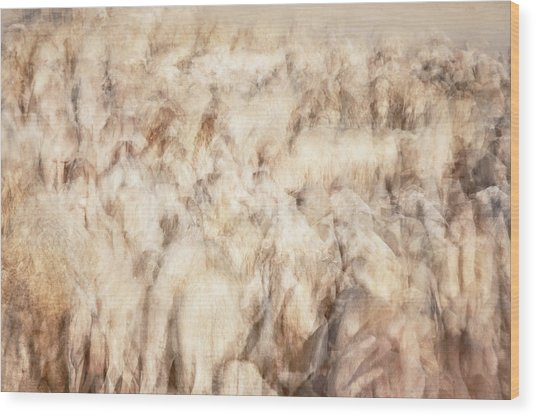 Untitled #3939, From The Soul Searching Series Wood Print