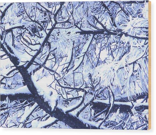 Untitled January 1964 Wood Print by Alexander Weygers