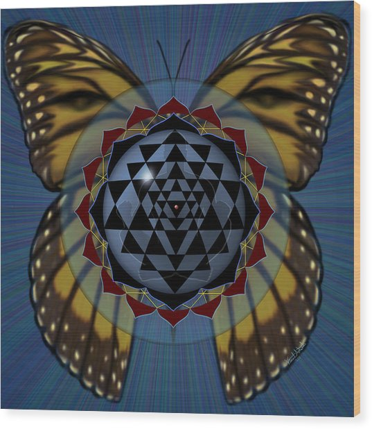 Transforming Meditation Wood Print