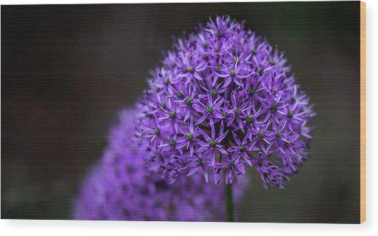Eternal Purple Wood Print