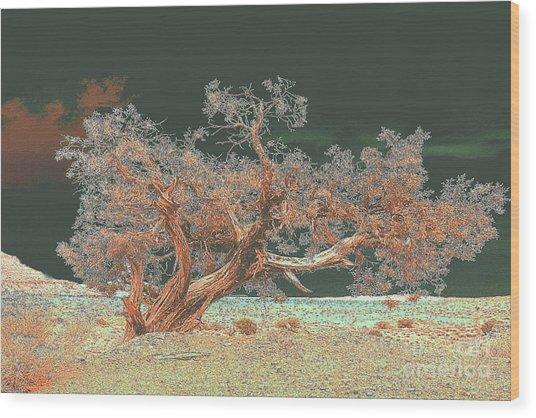 Unusual Tree Wood Print