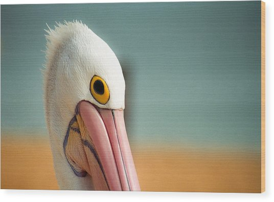 Up Close And Personal With My Pelican Friend Wood Print