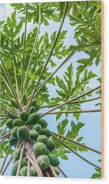 Up The Papaya Wood Print